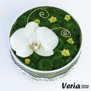 cutie cu orhidee alba